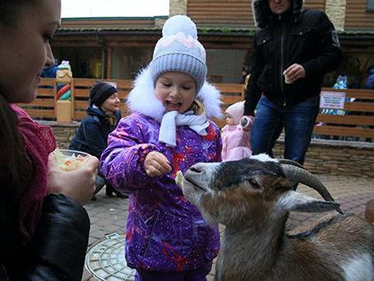 За умеренную плату жители могут взять на себя регулярное шефство над животными // Замир Усманов / Russian Look