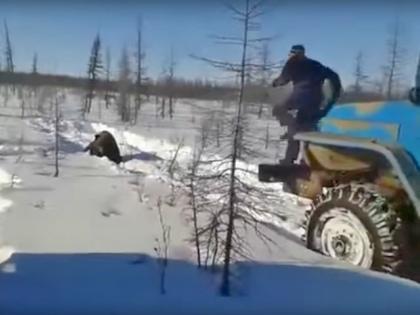 Случай в Якутске, где вахтовики устроили жестокую расправу над медведем, спровоцировал разговоры о необходимости ужесточения наказания за жесткое обращение с животными // Стоп-кадр YouTube