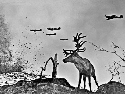 На войне фотограф искал жизнь // Евгений Халдей / семейный архив