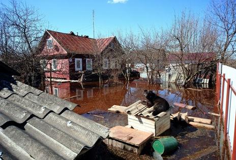 Подтопления можно ожидать в частном секторе в районе Затона и Лесоперевалки в левобережной части Новосибирска // Zamir Usmanov / Russian Look