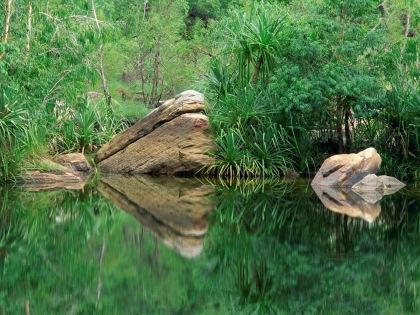 В водах рек и озер по всему миру найдены большие объемы искусственных подсластителей // Global Look Press