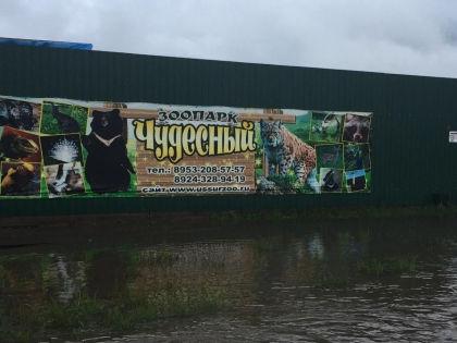 В Уссурийске оказались затопленными два зоопарка «Зеленый остров» и «Чудесный» //  Официальная группа зоопарка в Одноклассниках