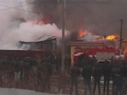 Пожар в тульском поселке // Скрин видео на сайте LifeNews