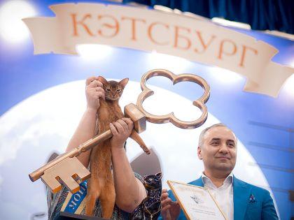 Победитель «Кэтсбурга-2016» // A&E Науменко