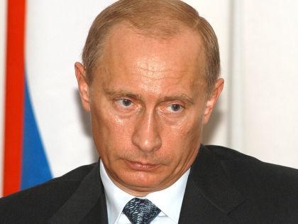 Владимир Путин // Виктор Погонцев / Russian Look