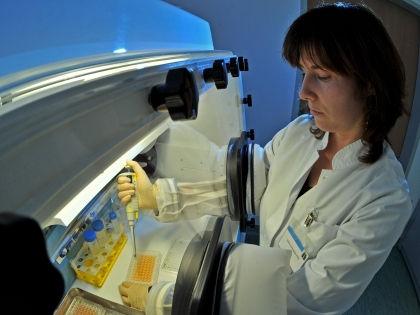 По мнению американских врачей, клетки личинок карликового цепня превратились в злокачественные образования // Global Look Press