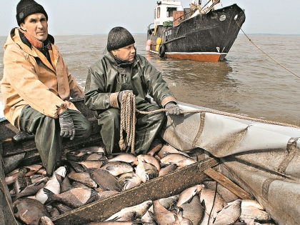 Однокурсник Путина накормит россиян рыбой? // РИА «Новости»