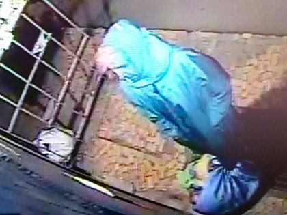 Камеры видеонаблюдения засняли, как Самсонова выносила пакеты, где были обнаружены останки тела // ГСУ СК РФ по Санкт-Петербургу