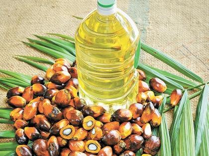 Пальмовое масло // Shutterstock