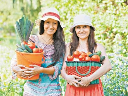 Сохранить собранный урожай помогут простые правила // Shutterstock