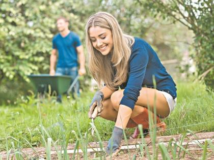 Опытные цветоводы знают: если посадить растения осенью, они быстрее адаптируются // Shutterstock