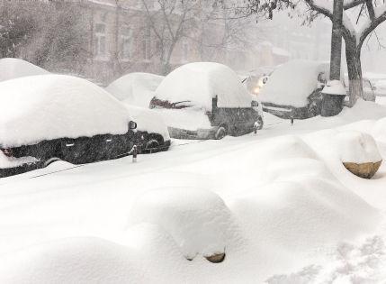 Теплую зиму в этом году ждать не стоит // Shutterstock