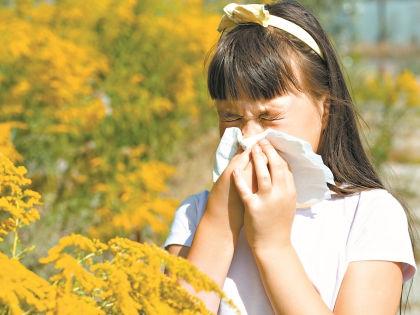 В России наступил аллергической сезон // Shutterstock