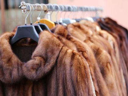Чипирование шуб спасет покупателей от контрафакта // Shutterstock