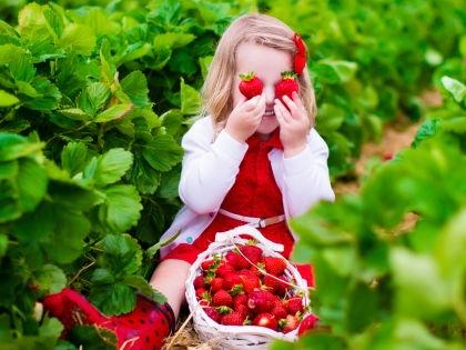 Сами посадили, сами вырастили, сами съели! // Shutterstock