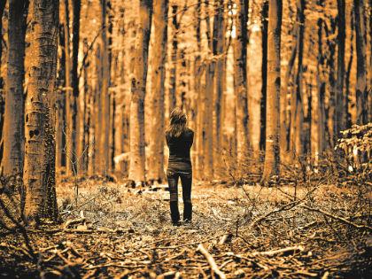 Катя оказалась в глухом лесу с разряженным телефоном // Shutterstock