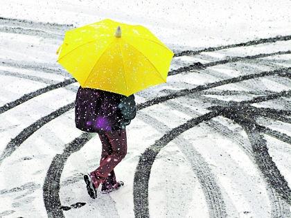 В апрельских снегопадах, напоминают ученые, нет ничего необычного // Shutterstock