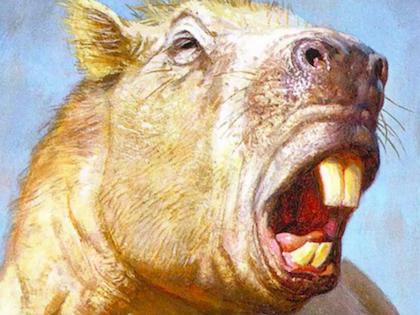 Возраст животного составляет не более 3 млн лет // YouTube