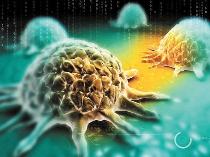 Лекарства от всех видов рака, как и лекарства от всех болезней, не существует // Shutterstock