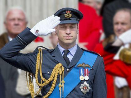 Принцу предстоит пройти курс специальной подготовки // Global Look Press