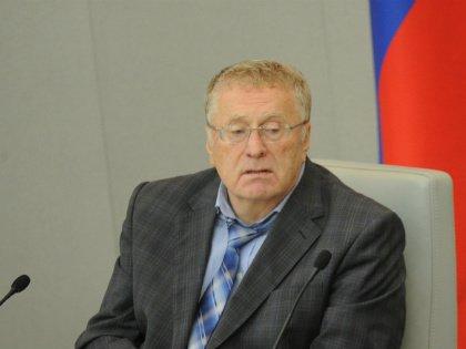 Жириновский // Global Look Press