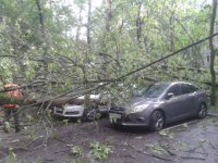 Последствия урагана в Москве 29 мая: ФОТОрепортаж