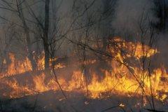 В Бурятии, Забайкалье и Амурской области введен режим чрезвычайной ситуации