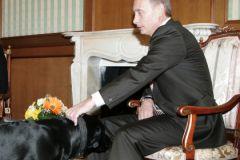Владимир Путин и лабрадор Конни