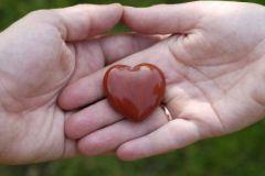 Определенные гены снижают риск болезней сердца у женщин на 12%