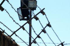 Бывший партнер Полонского заключен под стражу в Камбодже