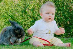 Мозг младенцев изменяет свою форму под воздействием ожиданий