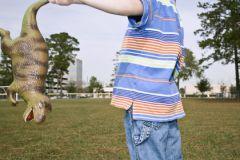 Интерес к жестоким животным может говорить о дефиците внимания у ребенка