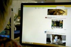 11% россиян никогда не делали перерыв в использовании социальных сетей в период отпуска