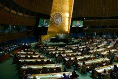 В Совете безопасности ООН прошел пятый тур голосования на выборах нового генерального секретаря Организации