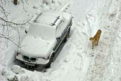 Каким реагентом пользоваться зимой?