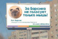 Коту Барсику еще 1,5 года, но его сторонники уверены: он сможет управлять Барнаулом