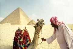 По мнению египтолога, порноролик унижает египетскую цивилизацию