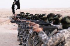 Власти Штатов не могут решить, насколько стране нужно сотрудничество с Россией в борьбе с ИГИЛ