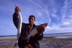 Ростуризм привлечет китайцев в РФ рыбой, а также хорошими гидами