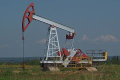 России необходимо сконцентрироваться на переработке сырья, уверен ученый