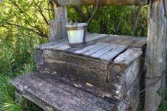 Все заболевшие пили воду из источника в поселке Рамено Сызранского района