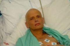 Компромат, который собрал Александр Литвиненко, носил «разрушительный характер» для серьёзных сделок