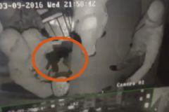 Преступники пытаются попасть в штаб-квартиру «Комитета по предотвращению пыток»