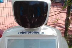 Startup Village просто кишел различными роботами