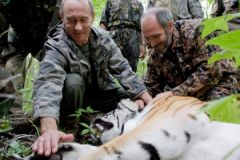 Тигр Кузя со своей приемной семьей