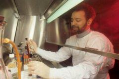 ВИЧ-инфекцию будут лечить с помощью дизайнерских антител