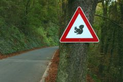 Дорожный знак