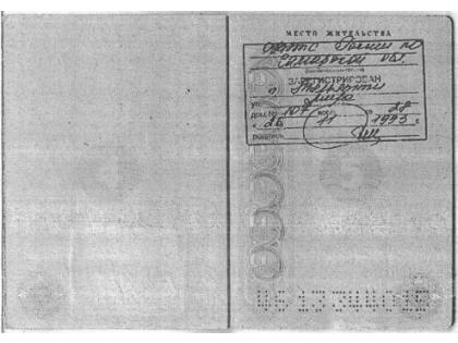 Беглый олигарх сохранил тольяттинскую прописку
