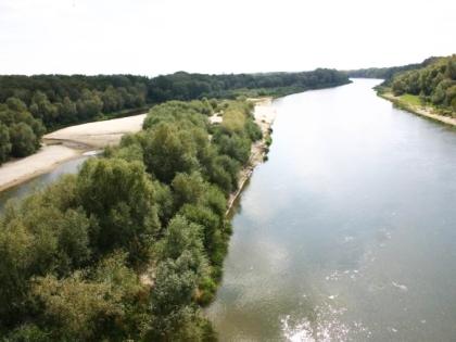 Природа Урюпинска
