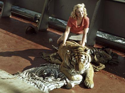 Маргарита Назарова с тигром